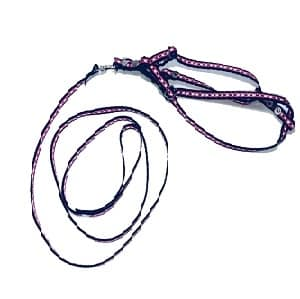 collar para perro mini negro