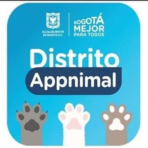 distrito appnimal