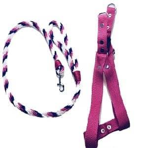 pechera para perro rosada
