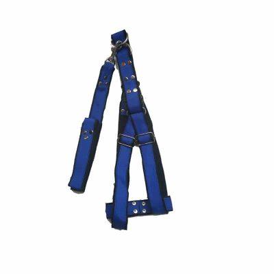 collar cinta para perro grande azulCollar para