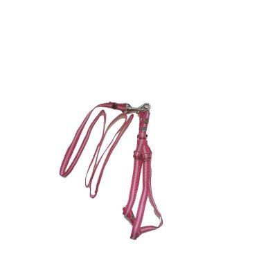 collar para perro multicolor rosado