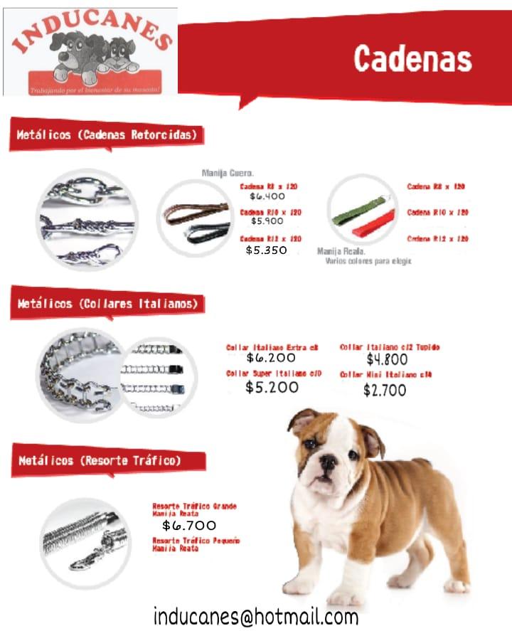 fabrica de collares para perros